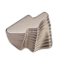 Customized Special Irregular Shaped Permanent Neodymium Magnet